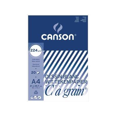 CANSON C A GRAIN 27X36